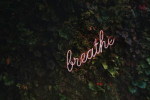 Neon sign that say breathe on a background of ivy leaves