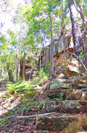 Landscape image of a rockface behind trees