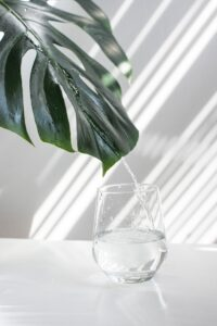 Glass of water on a white table in a white room with a green leaf